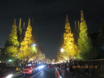 明治神宮外苑銀杏並木黄葉・ライトアップ