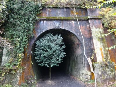 愛岐トンネルを歩く、2017年秋の公開