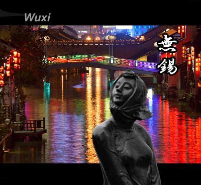 上海・蘇州・無錫への旅  (③無錫から上海への道)