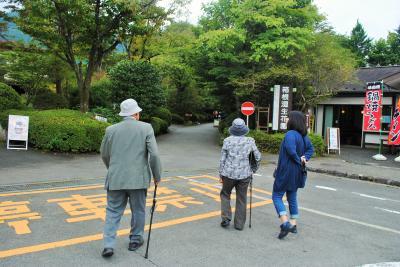 88歳の父と83歳の母を連れて箱根仙石原に。その2 母の大好きな箱根湿生植物園へ。PART1 母は車椅子ではなく自分の足で歩きました!