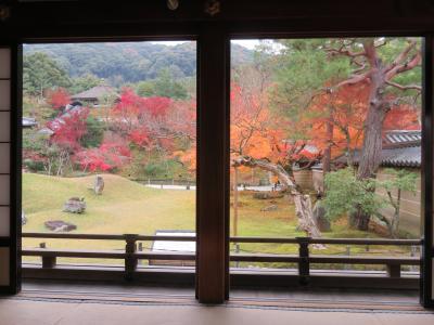 京都の紅葉ー高台寺ー