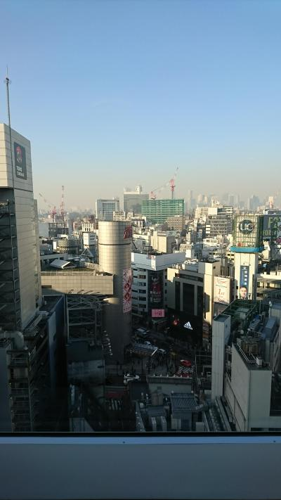 久しぶりの東京ひとり旅
