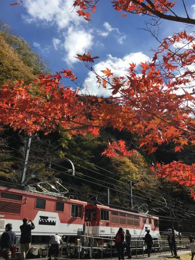 トロッコに揺られ紅葉狩り♪ 奥大井湖上駅へ