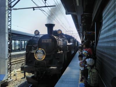 楽しい乗り物に乗ろう!  東武鉄道「リバティ&SL大樹」  ~栃木~