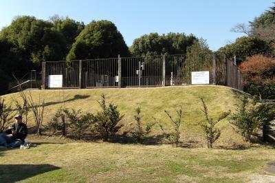 気象庁の「東京」の気象観測地点