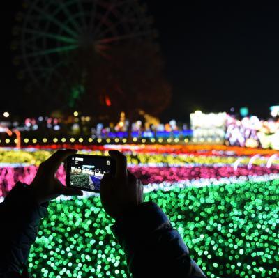 遊園地と動物園とイルミネーションと☆埼玉県:東武動物公園