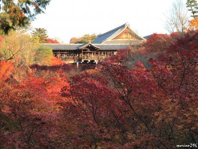 関西の紅葉めぐり2017(3)京都:宝厳院・常寂光寺・東福寺