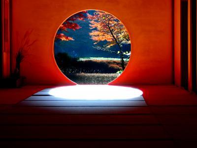 今年も紅葉の見納めは鎌倉明月院と獅子舞で