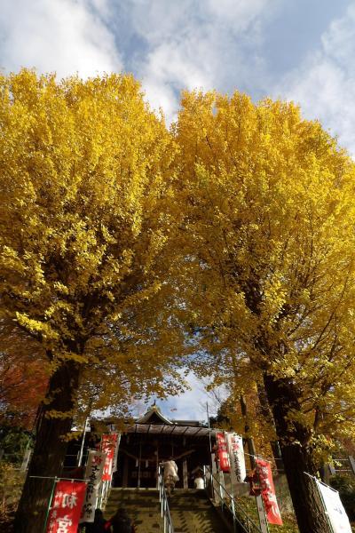 弥生神社(神奈川県海老名市国分北2)