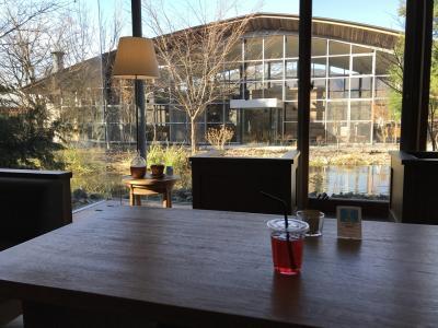 2017冬の思い出!ぶらりと箱根で温泉ホテルと芦ノ湖でゆるりご静養の旅!
