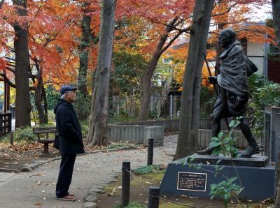 秋の荻窪、紅葉散歩(読書の森公園、角川庭園、大田黒公園)