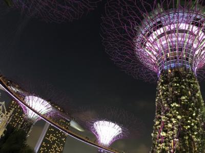 初めてのシンガポール 1日目