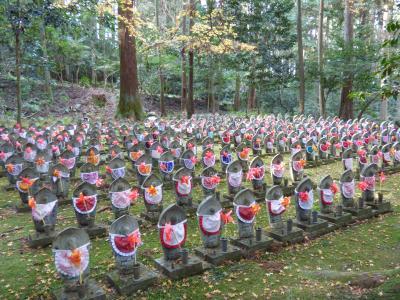 今年の紅葉も終わりを告げている湖東三山の金剛輪寺