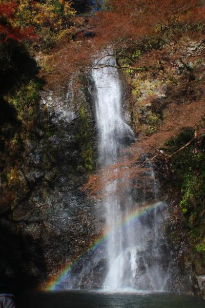 なぜか初めての箕面大滝と勝尾寺の紅葉を求めて1