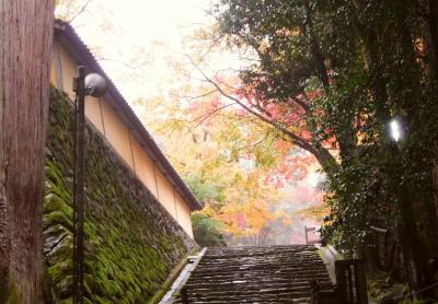 滋賀びわ湖ツアー(2017/11)第2日:長浜→竹生島→彦根→西明寺→大津