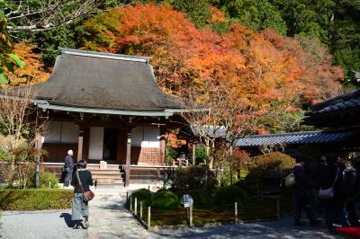 錦秋の京都 大原 寂光院、三千院、古知谷阿弥陀寺