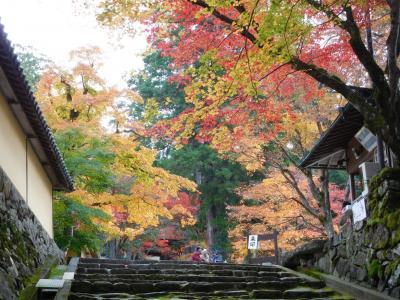 湖東三山 紅葉紀行(2017/11/17)