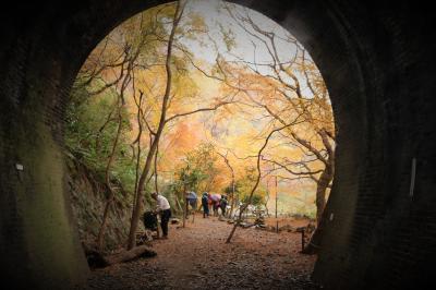 雨から曇りそして晴から曇り めまぐるしくお天気が変わった1日 愛岐トンネル群秋の特別公開と定光寺♪