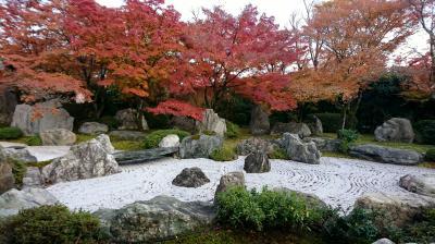 2017京都の紅葉「青龍殿・大舞台・青龍殿庭園」