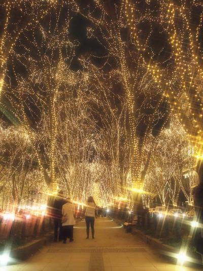速報!今年もまたこのシーズンがやってきた~!★☆SENDAI光のページェント2017☆★