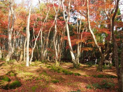 秋の京都2017 一人旅 その1 ~渡月橋・二尊院・祇王寺・りらっくま茶房~