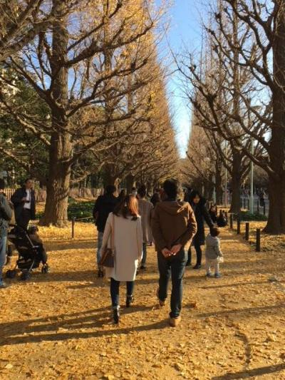神宮外苑を散策。銀杏並木はほぼ散ってしまってました~。