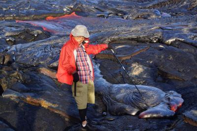 溶岩を見たくてやって来た。ハワイ島