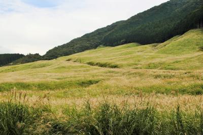 88歳の父と83歳の母を連れて箱根仙石原に。その4 ススキを堪能し、ホテルの温泉を満喫。