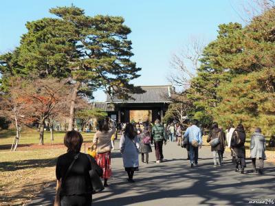 皇居乾通りの一般公開 ~ Xmasツリー♪ ~ 工事が終わった東京駅丸の内広場など