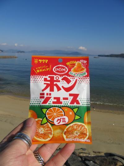 弾丸 松山 雑記帳