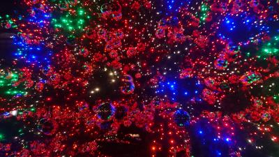 ベルリン&クリスマスマーケット 43時間 72,777歩
