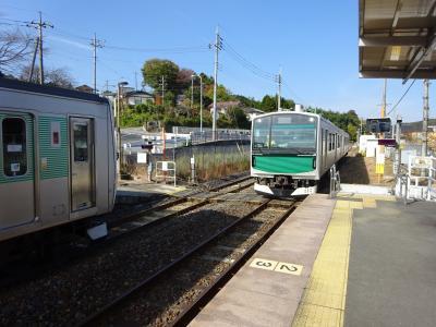 北関東の鉄道に乗りに行く【その3】 烏山線と日光線