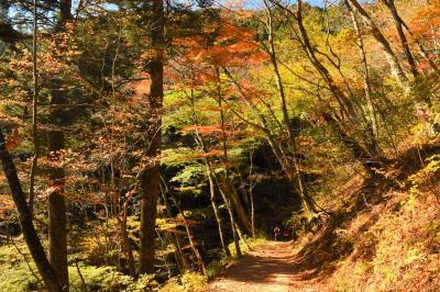 秋の奥多摩 御岳渓谷~御岳山~大岳山 紅葉ハイキング