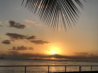 2017年11月kikiさんの今年4回目のHawaii ⑤ 6日7日目