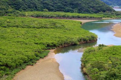 奄美大島②マングローブ原生林でカヌー体験・あやまる岬・奄美パーク