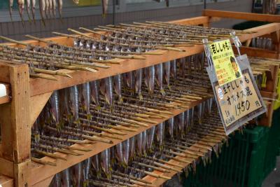 秋限定「鵡川のししゃも寿司」と甚大な被害を受けた日高本線へ(北海道)