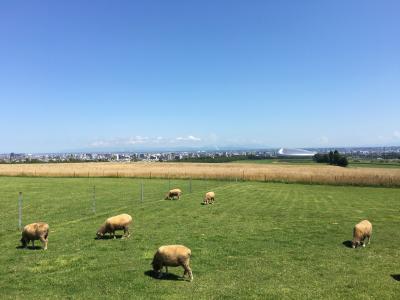 札幌市(H28北海道周遊旅行9・完) ー旅の締め括り札幌、ありがとう北海道ー