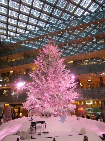 丸の内近辺で、クリスマスツリーを孫たちと見る