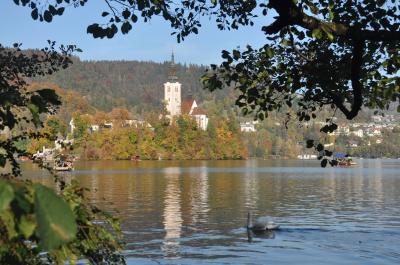 旧ユーゴスラビア周遊 【12】 < スロベニア ~ 秋のブレッド湖&ボーヒン湖 ~ >