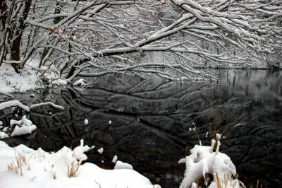 ◆深々と雪降り埋む滑川砂防ダム
