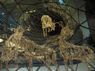 ハイデルベルク&フランクフルト クリスマスマーケット巡り 2017