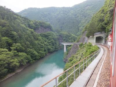 2017 大井川鐵道と磐田遠征【その3】大井川鐵道アプト式鉄道の旅