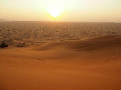 エミレーツ航空ビジネスクラスで行く煌きのUAE⑧ラッフルズドバイ・クラブフロア宿泊/砂漠で朝日を見るツアー