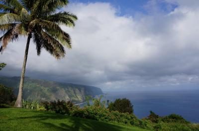 ハワイ島ホノカア貸別荘3泊(ワイピオ渓谷、ワイメア、プウコホラ遺跡、コハラ山展望台、サドル・ロード)