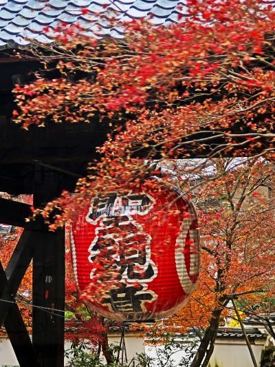 湖東三山-1 紅葉時季・彦根発シャトルバス/ひと巡り ☆金剛輪寺は門前を通り