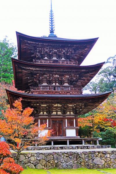湖東三山-4 龍應山西明寺b(国宝)三重塔 内部壁画も特別拝観 ☆庭園の紅葉,最盛期に