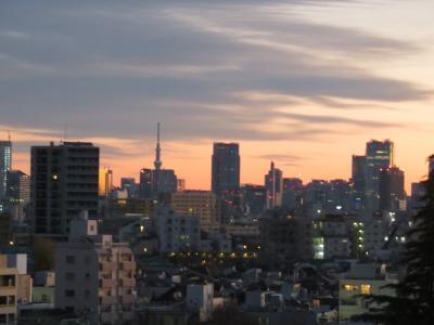 孫たちの家から東京の朝景色を写す