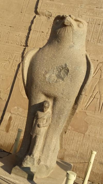 悠久の歴史に触れるエジプト・ナイル川クルーズ8日間~4日目 ホルス神殿、コム・オンボ神殿