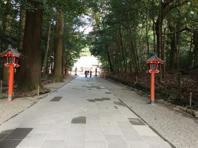 レンタカー付きツアーで指宿と霧島温泉2泊3日(1/4 鹿児島空港近辺)