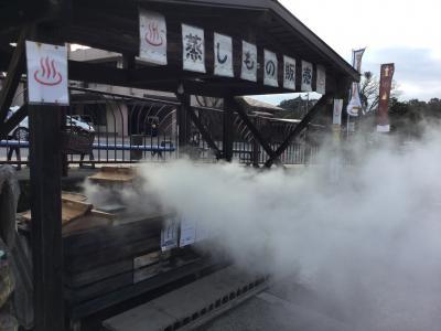 レンタカー付きツアーで指宿と霧島温泉2泊3日(4/4 霧島温泉)